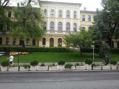 Велико Търново-Букурещ, Университет Кирил и Методи
